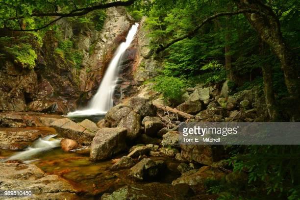 ellis falls - brook mitchell foto e immagini stock