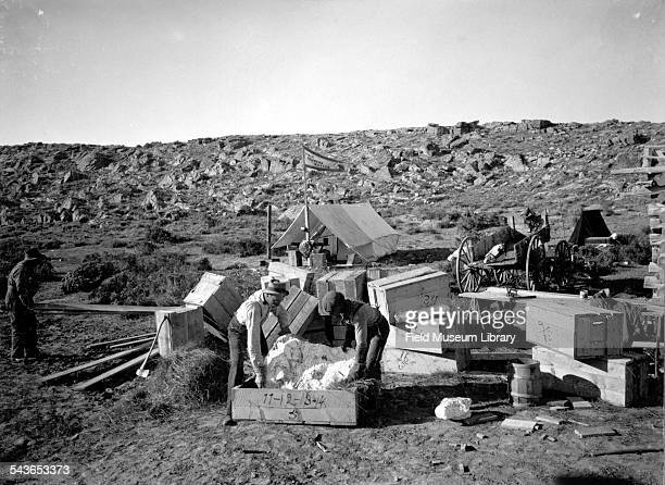 Elmer Riggs and Harold W 'Bill' Menke packing fossils at the Morrison Beds at the TB ranch Wyoming July 1900