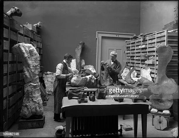 Elmer Riggs the first curator of Fossil Mammals wearing cap and field laboratory assistant Harold W Menke preparing Grand Junction Colorado fossils...