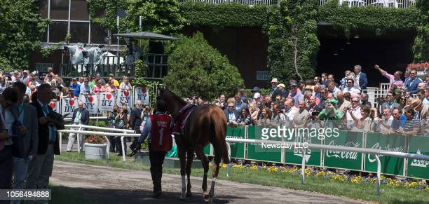 Race enthusiasts looking at a horse in the paddock at 149th Running of the Belmont Stakes at Belmont Park Racetrack in Elmont New Yorkon June 10 2017