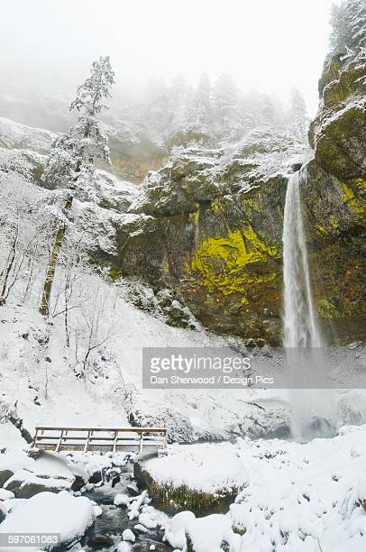 Elowah Falls and fresh snow in winter, Columbia River Gorge