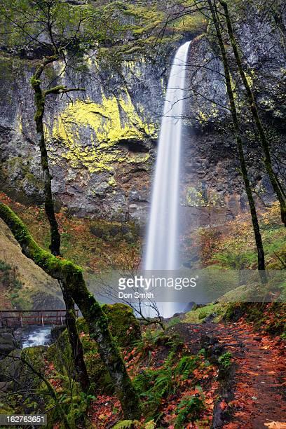 elowah falls - don smith stock-fotos und bilder