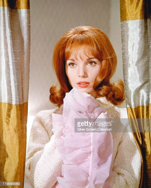 Elsa Martinelli Italian actress and fashion model wearing a white knitted jumper while posing between a pair of goldandwhite curtains in the...