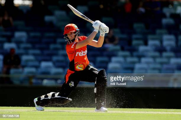 Elyse Villani of the Scorchers bats during the Women's Big Bash League match between the Perth Scorchers and the Hobart Hurricanes at WACA on January...