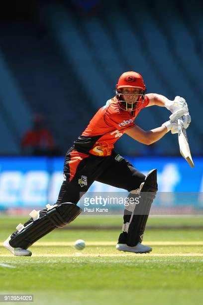 Elyse Villani of the Scorchers bats during the Women's Big Bash League final match between the Sydney Sixers and the Perth Scorchers at Adelaide Oval...
