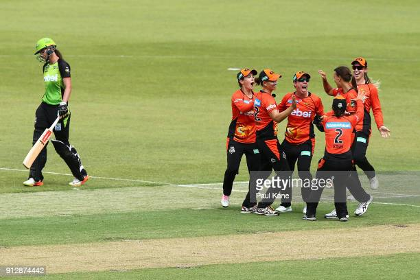 Elyse Villani of the Scorchers celebrates with team mates after winning the Women's Big Bash League semi final match between the Sydney Thunder and...
