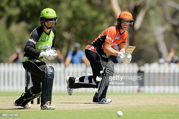 Elyse Villani of the Scorchers plays a reverse sweep shot during the Women's Big Bash League match between the Perth Scorcher and the Sydney Thunder...