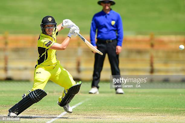 Elyse Villani of the WA Fury plays a drive during the WNCL match between Western Australia and Victoria at WACA on October 16 2016 in Perth Australia