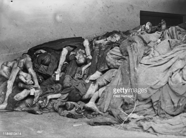 Emaciated bodies of the dead lie piled up victims of Nazi Germany's effort to exterminate the Jewish population political and social dissidents...