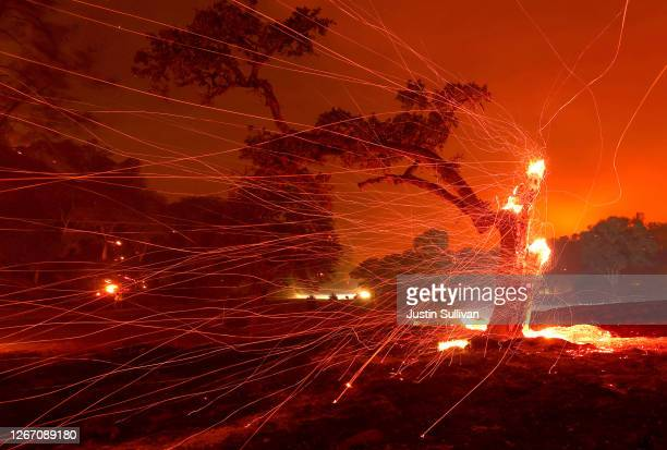 Embers blow off a burned tree after the LNU Lightning Complex Fire burned through the area on August 18, 2020 in Napa, California. The LNU Lightning...