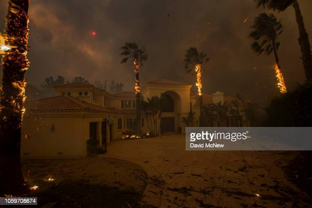 Embers falls from burning palms and the sun is obscured by smoke as flames close in on a house at the Woolsey Fire on November 9 2018 in Malibu...