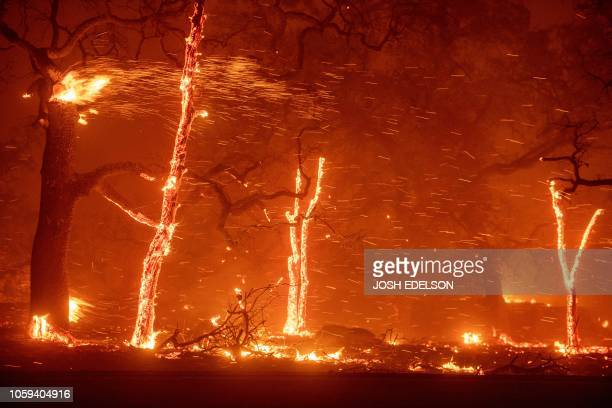 Embers fly as wind and flames from the Camp fire tear through Paradise, California on November 8, 2018. - More than 18,000 acres have been scorched...