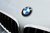 BMW Emblem and Kidney Grille