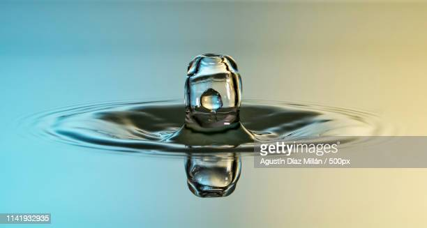 embryo drop - gota líquido stock pictures, royalty-free photos & images