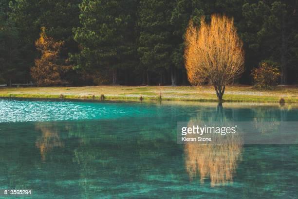 emerald green lake - mackenzie country fotografías e imágenes de stock