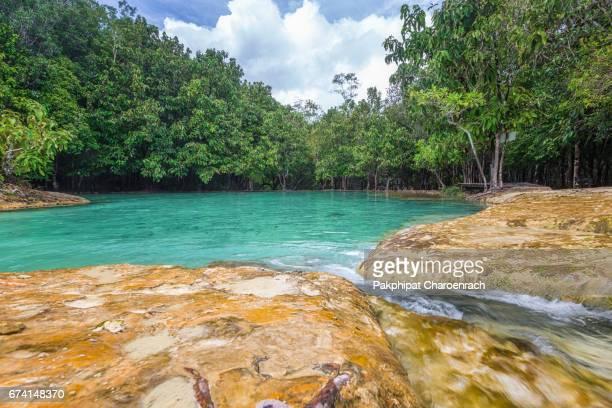 Emerald green water in a natural pool at Emerald Pool (Sa Morakot) in Krabi, Thailand.