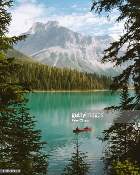 emerald lake banff - riserva naturale parco nazionale foto e immagini stock
