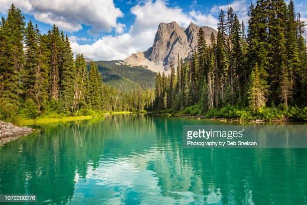 emerald lake in yoho national park canada - canadian rockies stockfoto's en -beelden