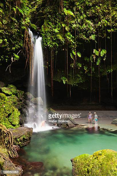 emerald pool waterfall - dominica stock pictures, royalty-free photos & images