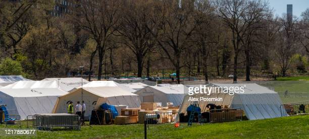 emergency field hospital opened in manhattan central park in response to the covid-19 pandemic. - alex potemkin coronavirus stock pictures, royalty-free photos & images