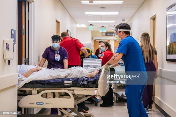 Emergency Room nurses and EMTs tend to patients in hallways at the Houston Methodist The Woodlands Hospital on August 18, 2021 in Houston, Texas....