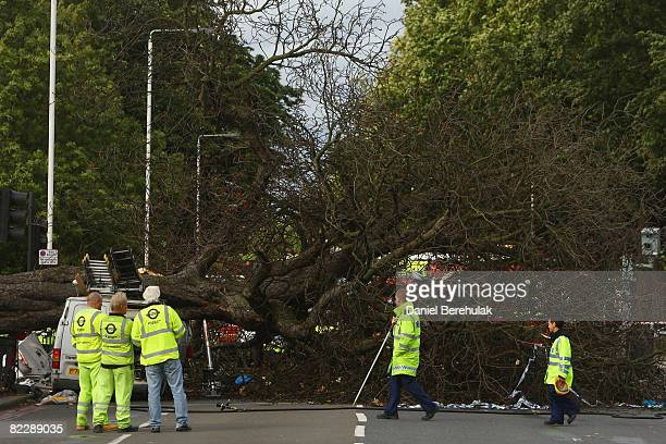 Emergency service workers look on as a fallen tree lays atop of a car and van on the A24 on August 13 2008 in London England Two cars have were...