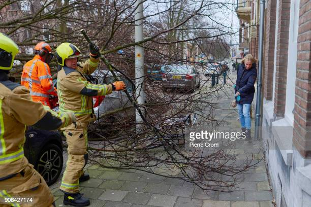 Emergency workers clear a street of fallen trees as a hurricaneforce storm blows galewinds up to force 12 on January 18 2018 in The Hague Netherlands...