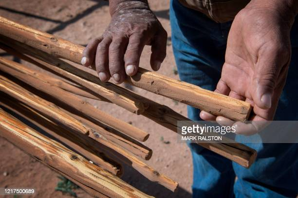 Emerson Gorman who is a Navajo elder gathers teepee timber at his property near the Navajo Nation town of Steamboat in Arizona on May 23 2020 Emerson...