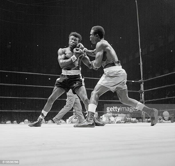 Emile Griffith takes a hard right from middleweight champion Dick Tiger during their championship 15-round fight at Madison Square Garden April 25....