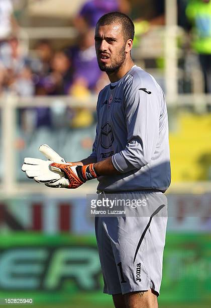 Emiliano Viviano of ACF Fiorentina looks on during the Serie A match between ACF Fiorentina and Calcio Catania at Stadio Artemio Franchi on September...