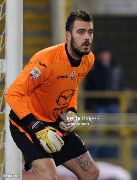 Emiliano Viviano of Fiorentina in action during the Serie A match between Bologna FC and ACF Fiorentina at Stadio Renato Dall'Ara on February 26 2013...