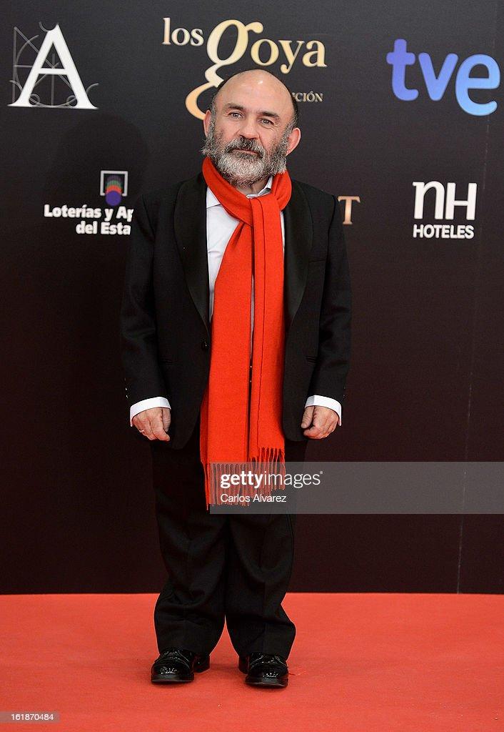 Emilio Gavira attends Goya Cinema Awards 2013 at Centro de Congresos Principe Felipe on February 17, 2013 in Madrid, Spain.