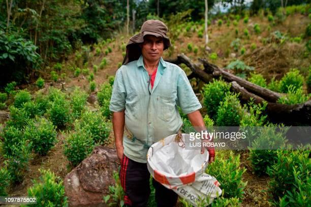 Emilio Sanchez a Venezuelan migrant working as a 'Raspachin' poses for a picture at a coca plantation in the Catatumbo region Norte de Santander...