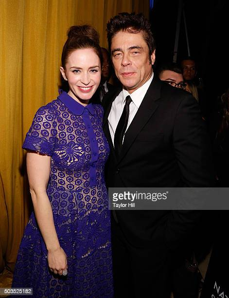 Emily Blunt and Benicio del Toro attend the 2015 National Board of Review Gala at Cipriani 42nd Street on January 5 2016 in New York City