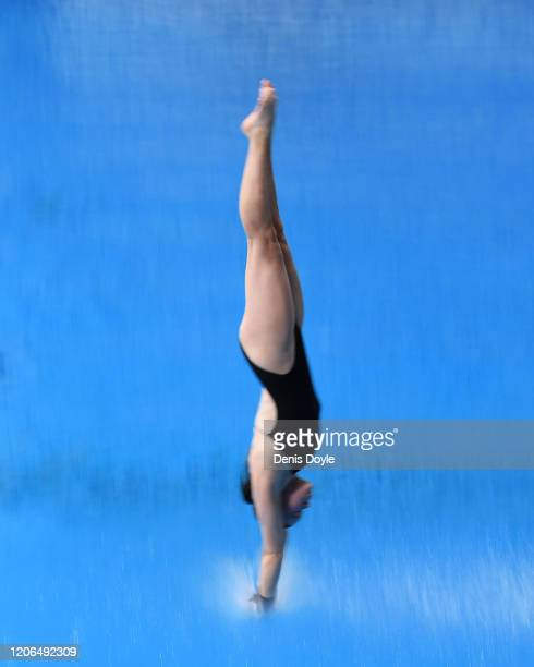 Emily Chinnock of Australia dives in the Platform Preliminary Women's event during the XXVI FINA Diving Grand Prix on February 15 2020 in Madrid...