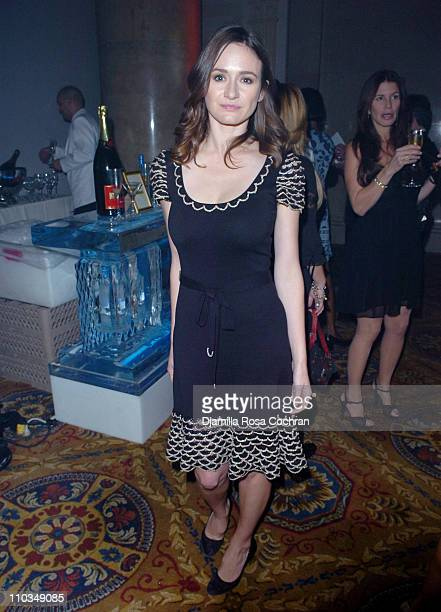 Emily Mortimer attends La Dolce Vita Benefit for the Sarah Ferguson Foundation at Cipriani Wall Street on November 1st 2007 in New York City New York