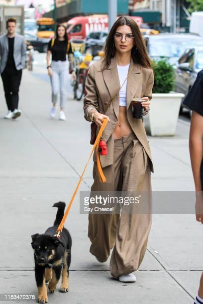 Emily Ratajkowski is seen walking her pet Colombo on June 03, 2019 in New York City.