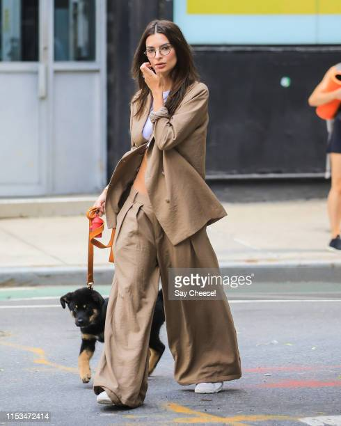 Emily Ratajkowski is seen walking her pet Colombo on June 03 2019 in New York City