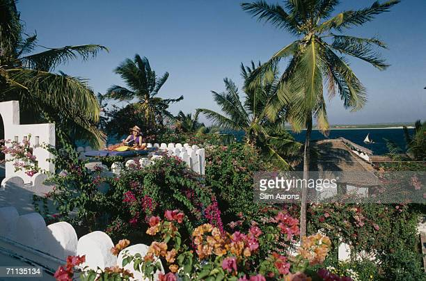 Emily Smith Myers lazes on a rooftop surrounded by bougainvillea on Lamu Island in the Lamu Archipelago of Kenya February 1987