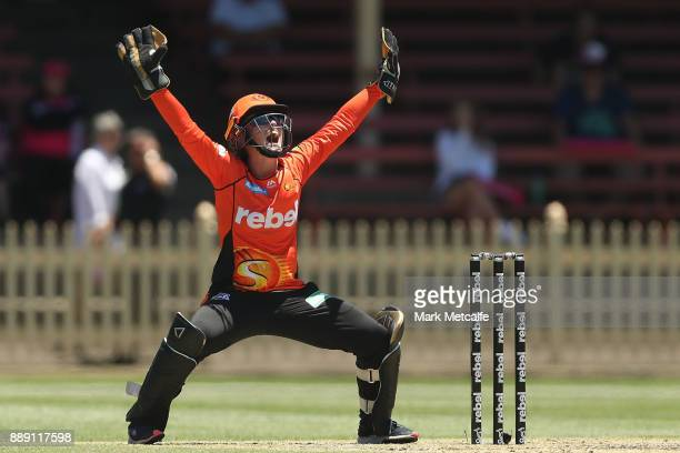 Emily Smith of the Scorchers appeals for lbw against Sammy Jo Johnson of the Heat during the Women's Big Bash League WBBL match between the Perth...