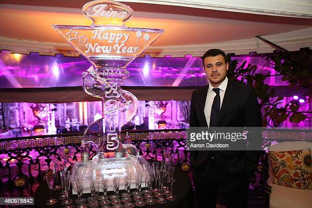 Emin Agalarov attends New Years Eve And Birthday Party For Irina Agalarova at Barton G on December 31, 2014 in Miami Beach, Florida.