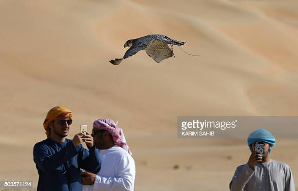 Emirati falconers take pictures as they train their birds on January 6 during the Liwa 2016 Moreeb Dune Festival in the Liwa desert some 250...