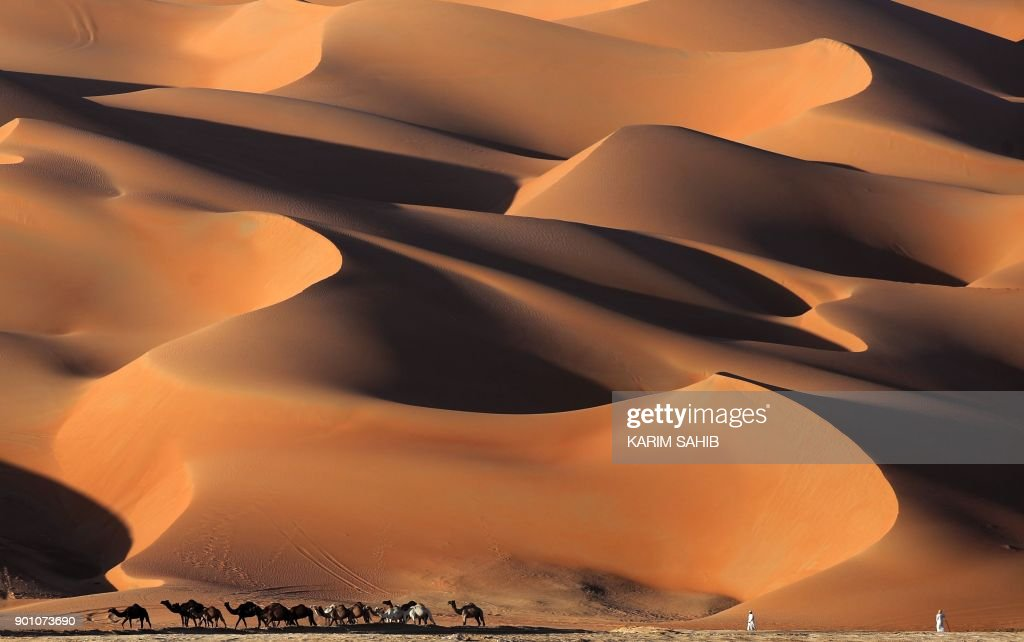 Emirati men walk with camels across the Liwa desert, some 250 kilometres west of the Gulf emirate of Abu Dhabi, during the Liwa 2018 Moreeb Dune Festival on January 4, 2018. The festival, which attracts participants from around the Gulf region, includes a variety of races (cars, bikes, falcons, camels and horses) or other activities aimed at promoting the country's folklore. /