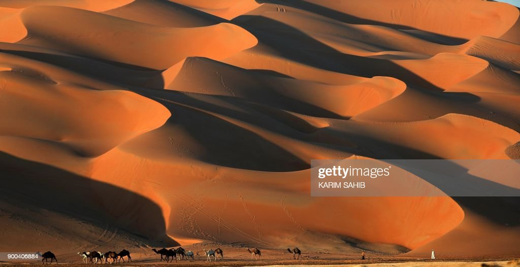 Emirati men walks with camels across the Liwa desert, some 250 kilometres west of the Gulf emirate of Abu Dhabi, during the Liwa 2018 Moreeb Dune Festival on January 2, 2018. The festival, which attracts participants from around the Gulf region, includes a variety of races (cars, bikes, falcons, camels and horses) or other activities aimed at promoting the country's folklore. /