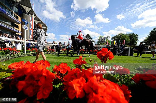 Emma JayneWilson of Canada riding Retirement Plan Return to the winners enclosure after winning The Dubai Duty Free Shergar Cup Stayers at Ascot...
