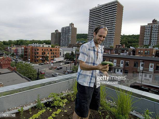 Emmanuel Cosgrove holds a cucumber grown on his rooftop garden at his home 09 August 2007 in Montreal Quebec Canada Cosgrove's home located just...