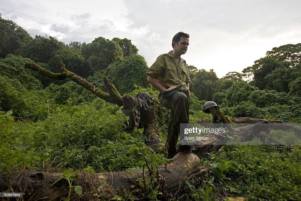 Emmanuel De Merode, tireless ICCN Congolese Conservation Director of Virunga National Park, makes an emotional return to Bukima in the Mountain Gorilla sector of Virunga National Park for the first time in over 15 months of fighting and tensions in the area, North Kivu, D.R.C, November 25, 2008. Helmets and clothing from the CNDP Rebels are seen all around Bukima as it is the former front line of the conflict between CNDP and the Congolese Army. The Gorilla Sector of the Park has been occupied by the rebel movement CNDP under rebel Congolese Tutsi General Laurent Nkunda. Since September 2007 no ICCN Ranger has set foot in this sector, almost all had to flee the fighting and it has not been safe to return. Recent violence in the region has seen CNDP extend its power in the region and it now controls over 50% of the park and all of the Southern section. Emmanuel De Merode, the Director of Virunga National Park, has performed some remarkable diplomacy since the recent fighting and has succesfully negotiated with CNDP and General Nkunda to return the ICCN Rangers to the Park. This is a fragile process but so far 120 courageous Rangers are back at the Southern Headquarters at Rumangabo and there is a camp in the Gorilla Sector at Bukima which has begun a Gorilla census to determine the effects of the war on the mountain Gorilla population. It is a remarkable case of conservation winning out over politics. The DRC had just over 200 of the extremely rare mountain Gorillas, of which there are only 680 in the world.