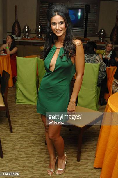 Emmanuelle Chriqui *Exclusive Coverage* during HBO 2007 Golden Globe After Party Inside at Beverly Hilton in Beverly Hills California United States