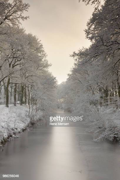 emmen,netherlands - mensen stock pictures, royalty-free photos & images