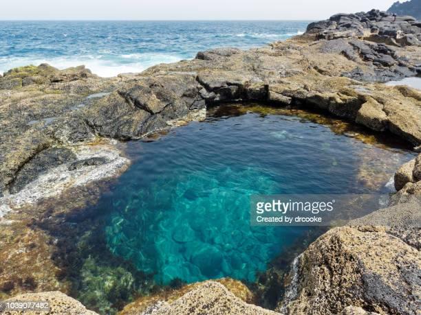 emmerald green water pond by the sea in volcanic landscape - laguna fotografías e imágenes de stock
